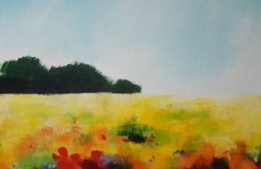 Doet Boersma - Kleur in het veld