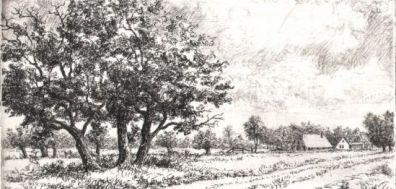 Werk van Wim van der Meij te koop bij Kunstuitleen Zutphen